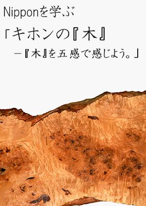『キホンの『木』-『木』を五感で感じよう。』2013年8月28日(木)